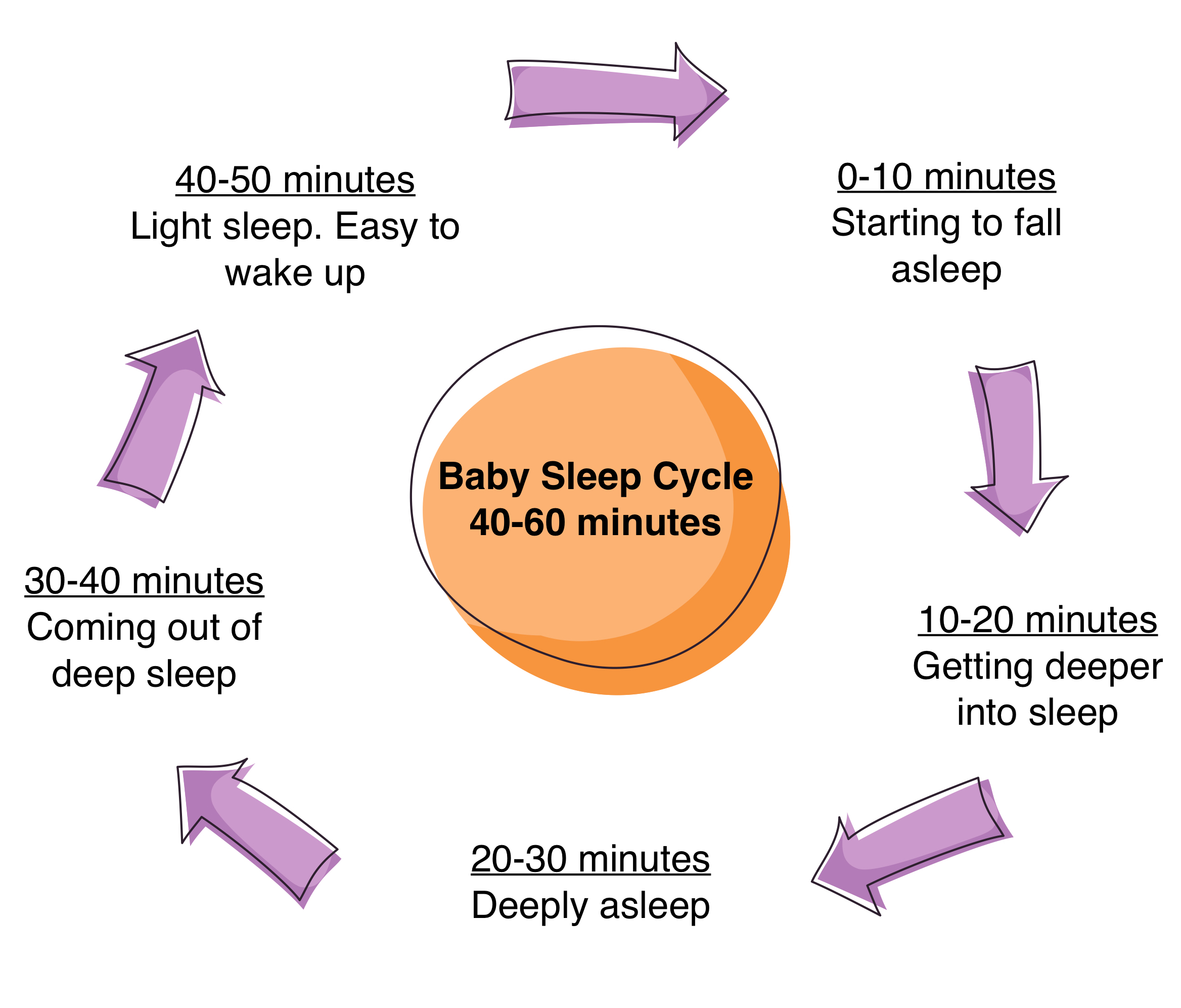 baby-sleep-cycles2